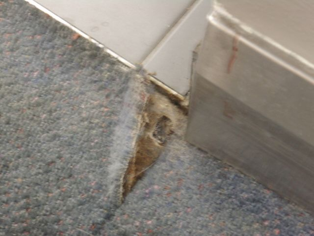 Asbestos In Carpet Glue Carpet Vidalondon