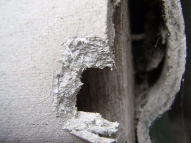What Does Asbestos Wall Insulation Look Like Safe Environments | Id...